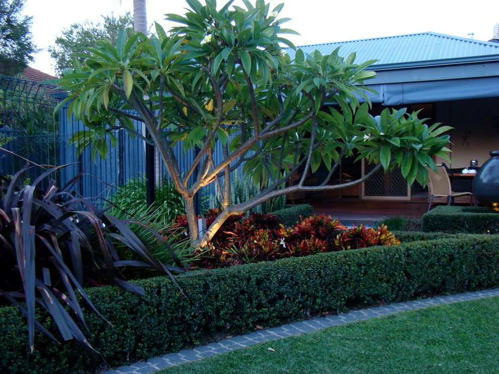An entertainers garden - Tropical - Landscape - Perth - by ...