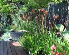 Ardross Garden eclectic-landscape