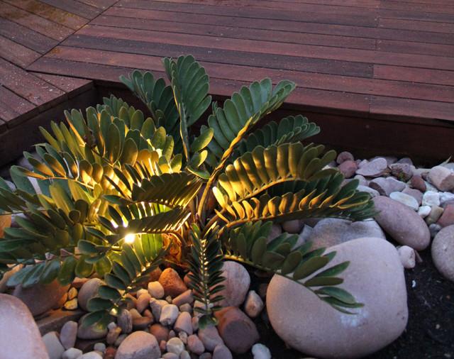 Garden Ideas Small Landscape Gardens Pictures Gallery: Ascher Smith Landscape Designs