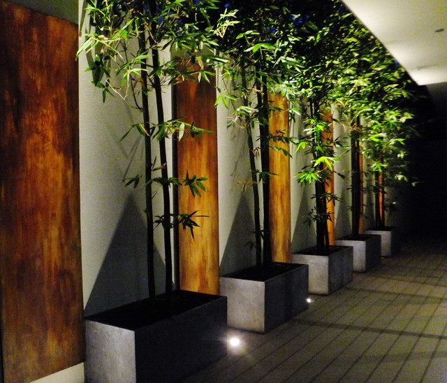 Bamboo Amp Rust Contemporary Landscape Perth By