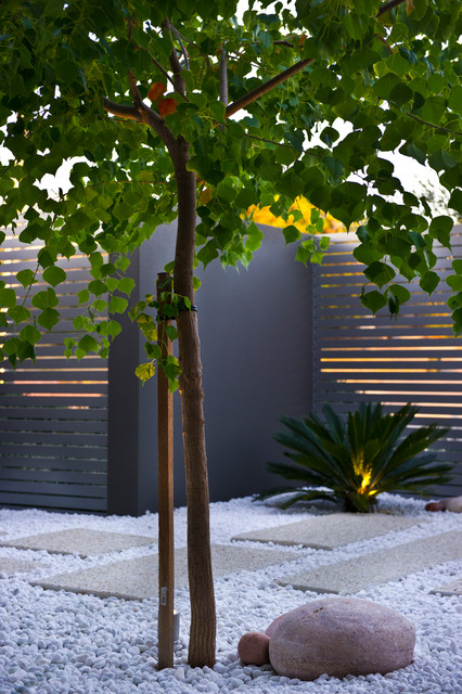 Urban courtyards contemporary landscape perth by for Courtyard landscaping perth