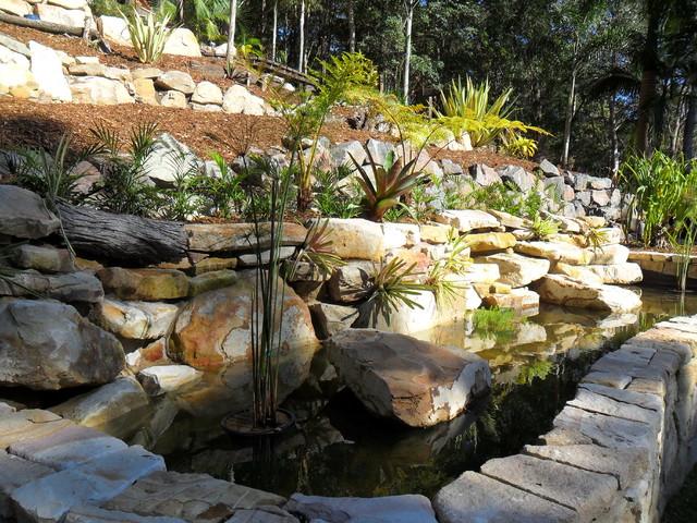 Buderim koi fish pond for Chinese koi pond