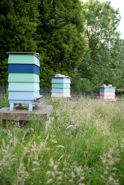 With a more open yard, there's opportunity for more colorful, attractive apiaries. Designs like this combine the practicality of those above with a sense of style, blasting color across the green lawn.
