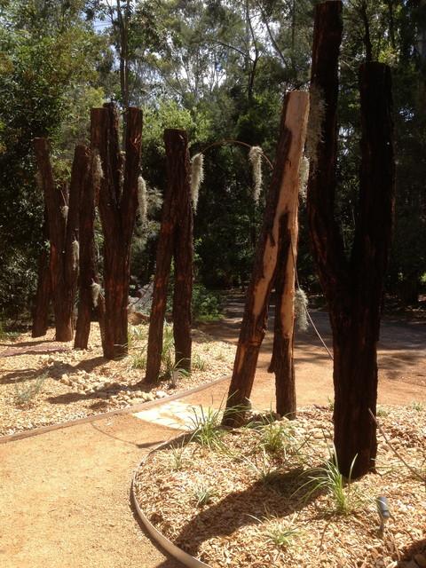 Contemporary australian native garden contemporary for Australian native garden layout
