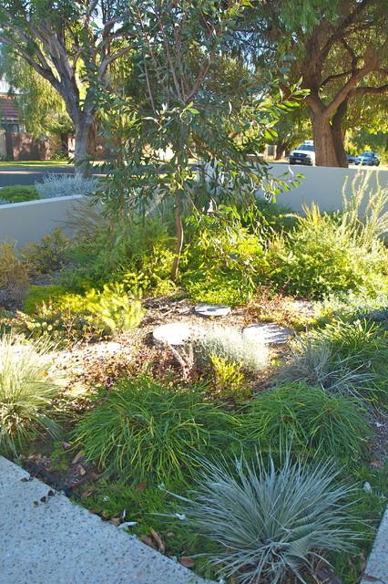 Contemporary Garden and Vertical Garden Feature