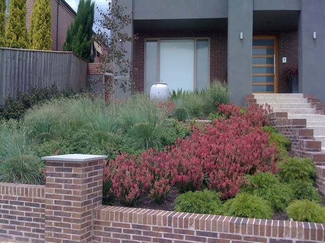 Contemporary native australian garden contemporary for Modern front garden ideas australia