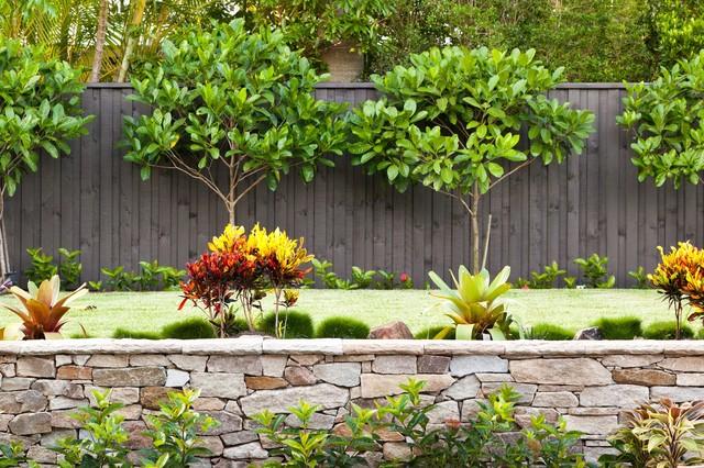 Cooparoo 3 tropical landscape brisbane by utopia landscape design - Landscaping along a fence ...