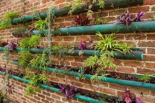 gutter garden on a fence