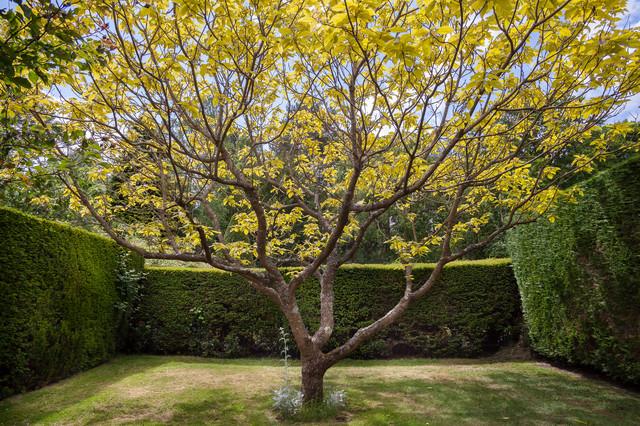 I consigli dei pro come delimitare la propriet con for Divisori da giardino