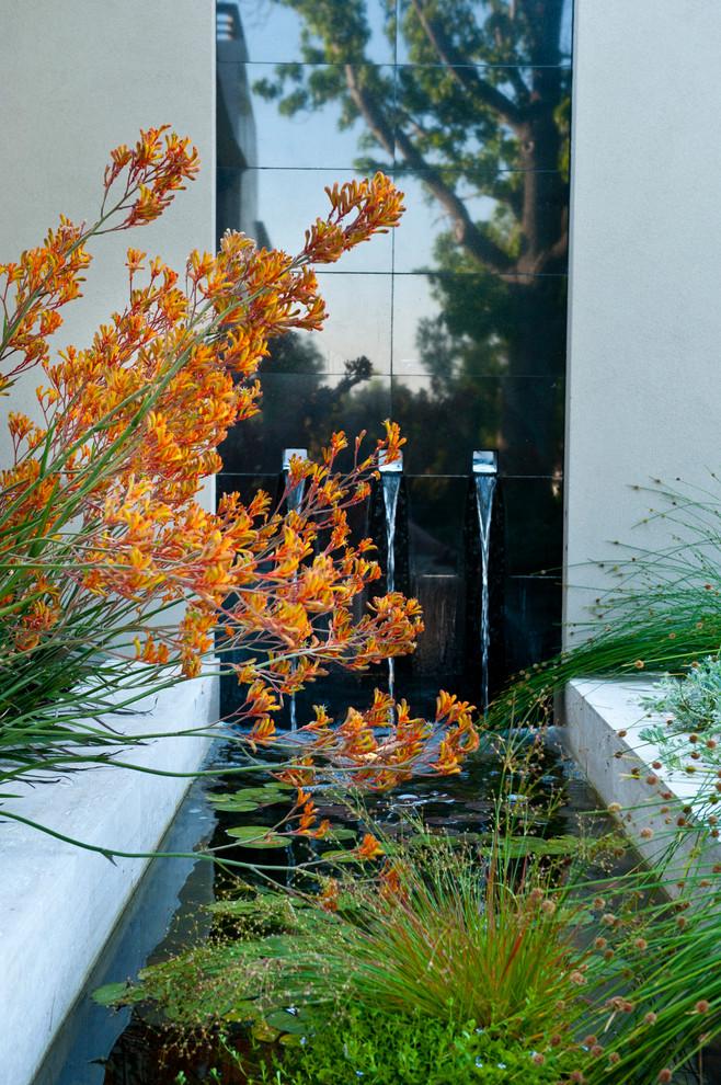 Dalkeith garden - Contemporary - Landscape - Perth - by ...