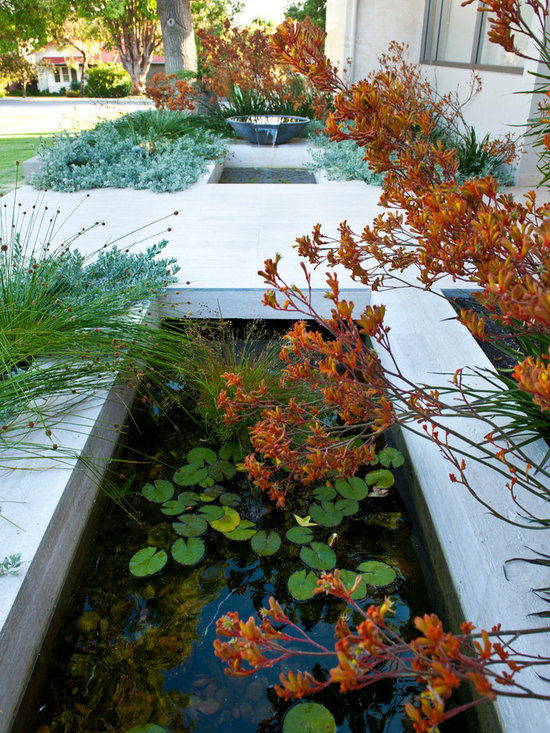 Perth Front Garden Home Design Ideas Pictures Remodel And Decor