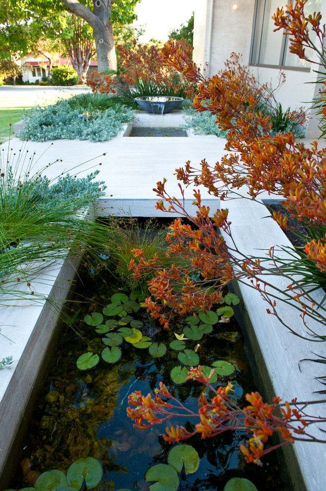 Design ideas for a mid-sized contemporary front yard water fountain landscape in Perth.