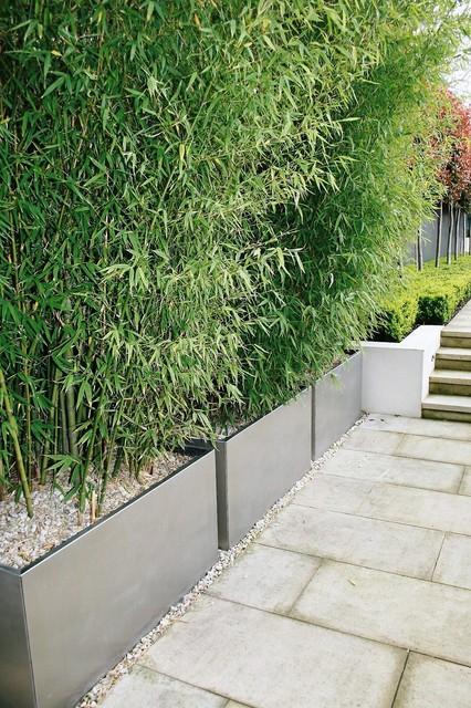 Design Elements In the Garden modern-landscape