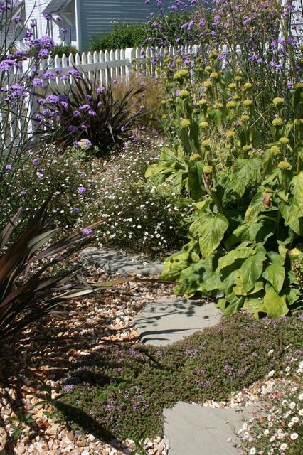 Drought Tolerant Front Garden