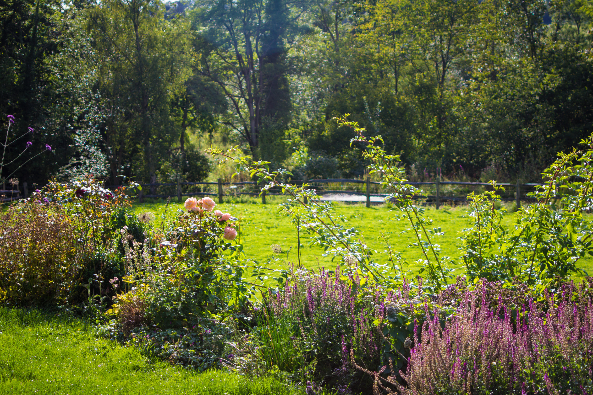 Family garden at one with nature