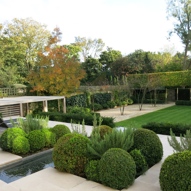 Formal Structural Garden - Contemporary - Garden - London - By Charlotte Rowe Garden Design