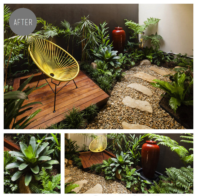 Fortitude valley internal apartment courtyard tropical for Tropical courtyard garden design