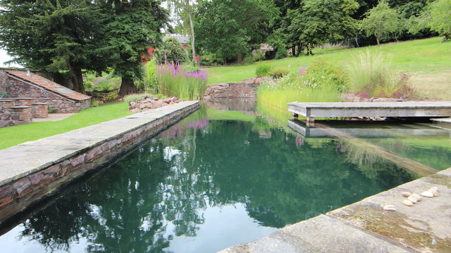 Freshwater Hill Top Natural Swimming Pool In Bristol