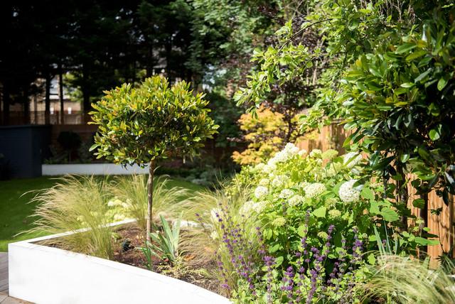 Kate Davidson Landscape Architecture Garden Design : Garden design alleyn road dulwich contemporary