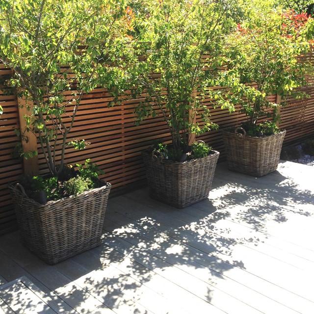 Garden for a barn conversion contemporary exterior for Garden conversion