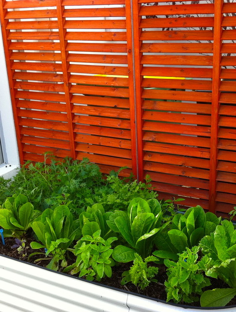 Garden screens fremantle eclectic landscape perth for Garden landscaping perth