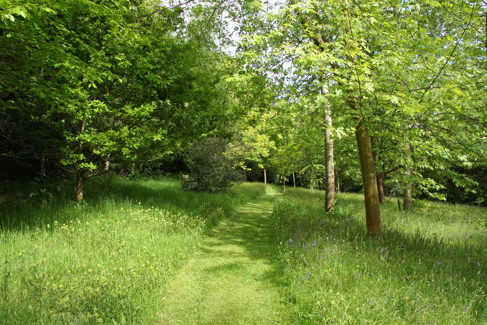 Haslemere Garden - Traditional - Landscape - Hampshire ...
