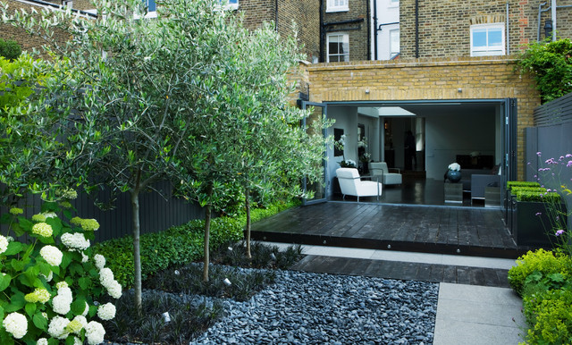 Jet Black Garden Contemporary Landscape London By - Backyard design charlotte