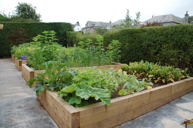 Large timber planters create an excellent vegetable garden for Large vegetable garden