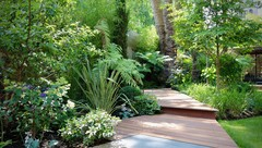 Professional Tips for Designing a North-facing Garden
