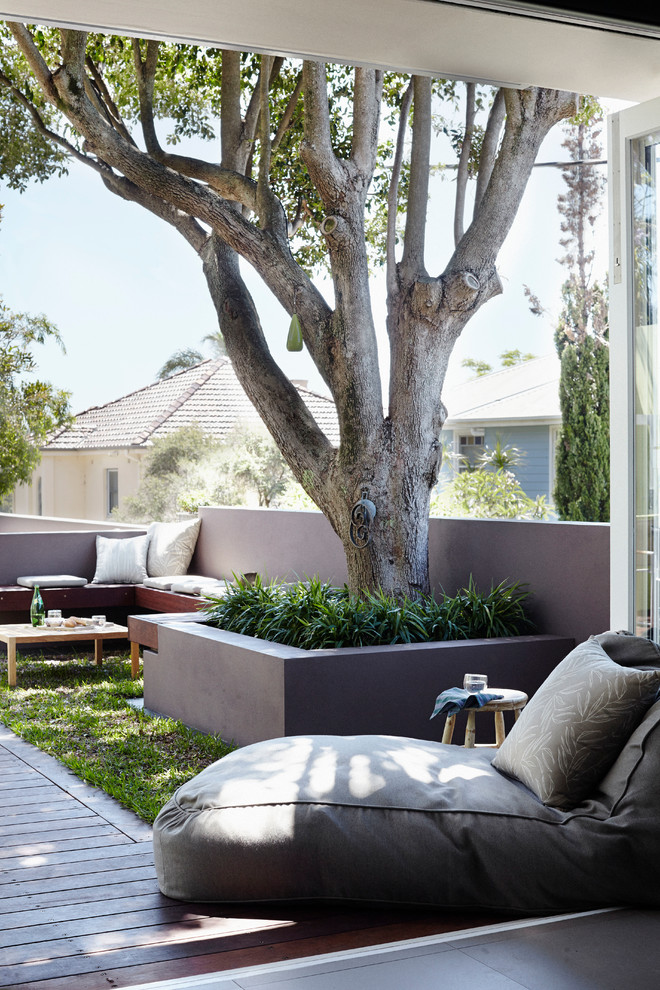 Design ideas for a mid-sized coastal partial sun front yard retaining wall landscape in Sydney with decking for spring.