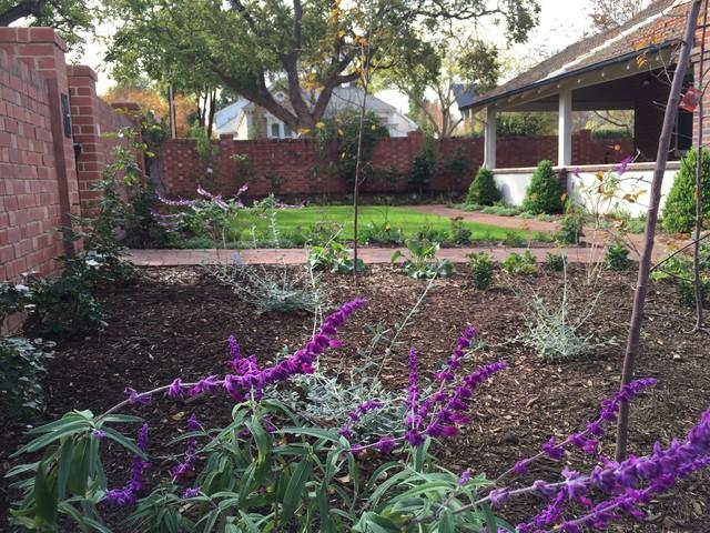 Medindie garden for Landscape contractors adelaide