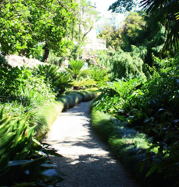 Mediterranean Woodland Garden Renovation, French Riviera Mediterranean  Garden