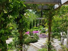 Garden Tour: Pretty Terraces Transform a Shallow, Sloping Plot