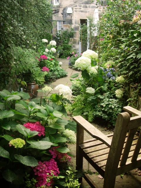 Motif garden design edinburgh linear garden 1 for Garden design edinburgh