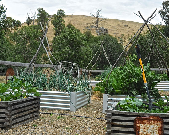 Tiered Vegetable Garden Home Design Ideas Pictures