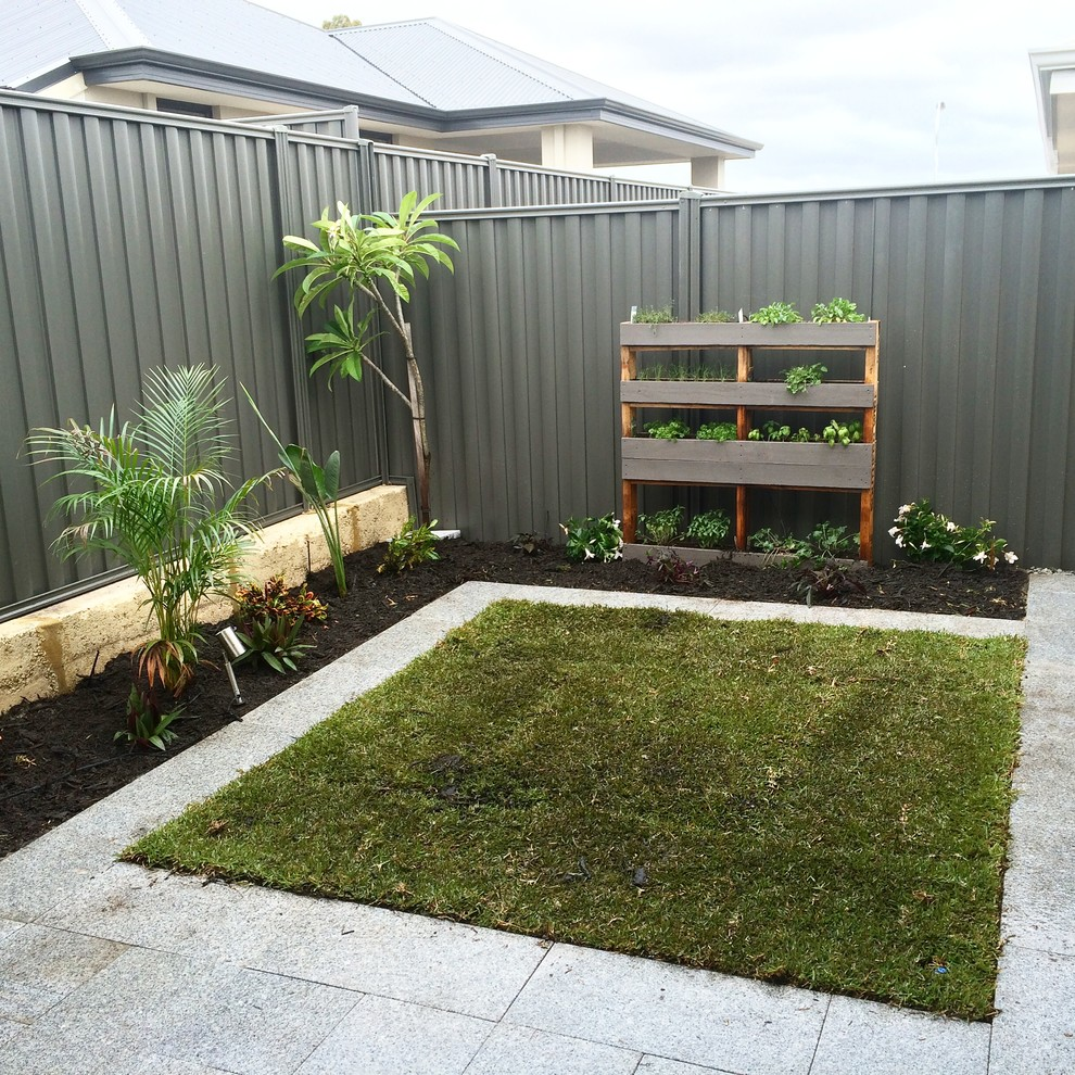 My Tropical Back Garden - Tropical - Landscape - Perth