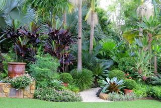 Nevell garden tropical garden sydney by garden for Small garden design sydney