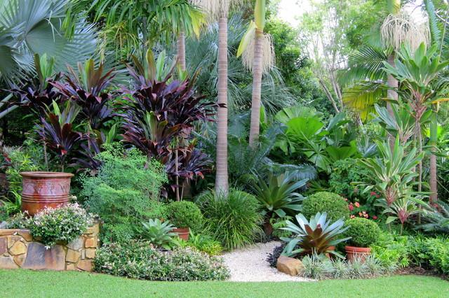 Nevell garden tropical garden sydney by garden for Garden design ideas sydney