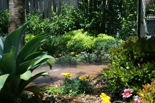 Design ideas for a small eclectic front yard partial sun garden in Brisbane with a garden path.