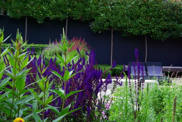 Perennial Planting contemporary-landscape