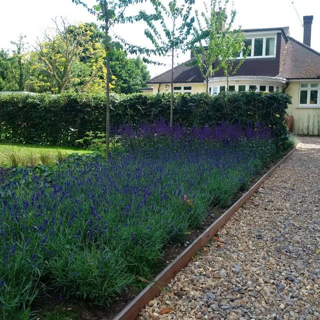 Richmond garden design contemporary garden london for Garden design richmond