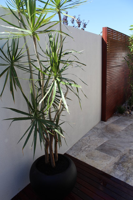 Tropical Garden Designs additionally Travertine Waterwall With Brass Taps Perth together with The Big Garden Rev  Stage 1 Tropical Patio Perth besides Birrigon Loop Swanbourne together with Travertine Waterwall With Brass Taps Perth. on ascher smith landscape designs tropical perth