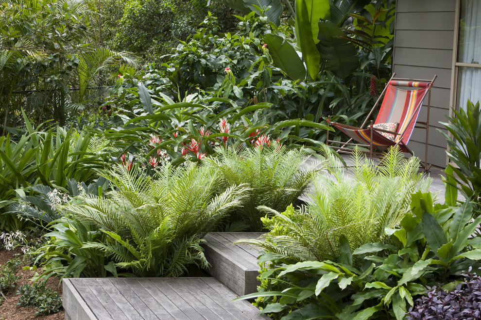 Inspiration for a tropical backyard landscaping in Sydney with decking.