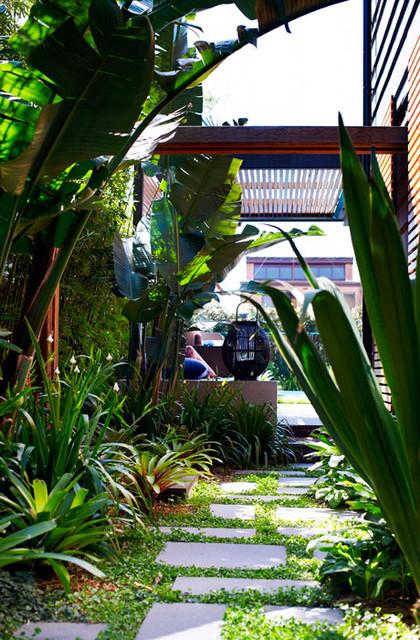 Secret landscape design oasis in Sydney tropical-landscape