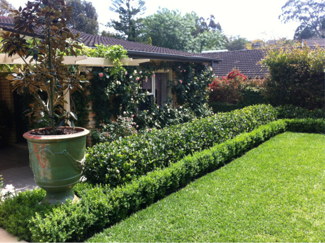 Semi Formal Garden Traditional Landscape Sydney By