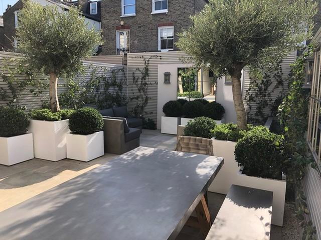 Small Contemporary Garden Wandsworth Contemporary Landscape