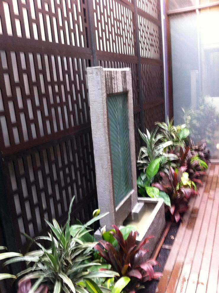 Small Courtyard Garden - Asian - Landscape - Melbourne ...