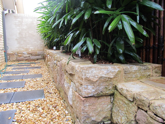 Small Courtyard Oasis Contemporary Landscape Sydney