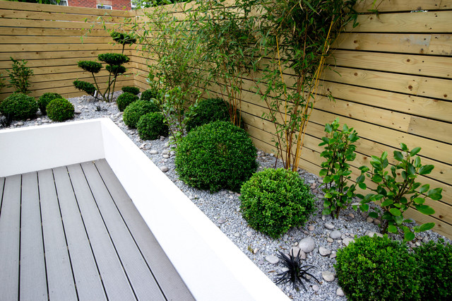 Small Low Maintenance Garden Contemporary Garden Other By