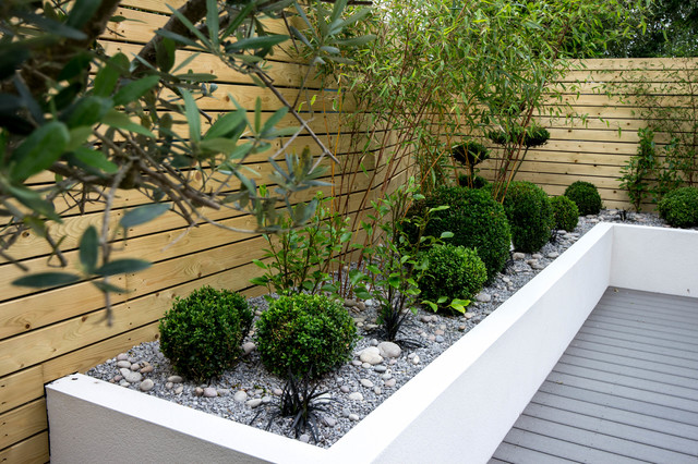 Small Low Maintenance Garden Contemporary Landscape Other